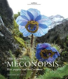 Genus Meconopsis, The: Blue poppies and their relatives by Christopher Grey-Wilson (Hardback)