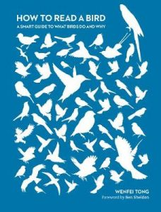 How to Read a Bird by Dr Wenfei Tong (Hardback)